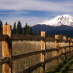 35064536 - ranch fence row countryside rural california mt shasta